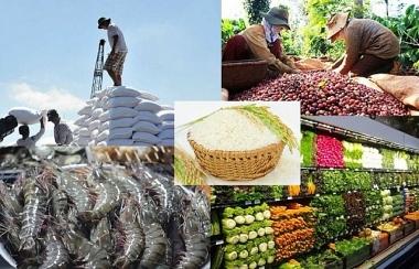Xuất khẩu nông lâm thủy sản 8 tháng năm 2021 tăng 21,6% so với cùng kỳ