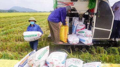 Đại dịch Covid-19 ảnh hưởng tới chuỗi cung ứng các sản phẩm nông, lâm nghiệp và thủy sản