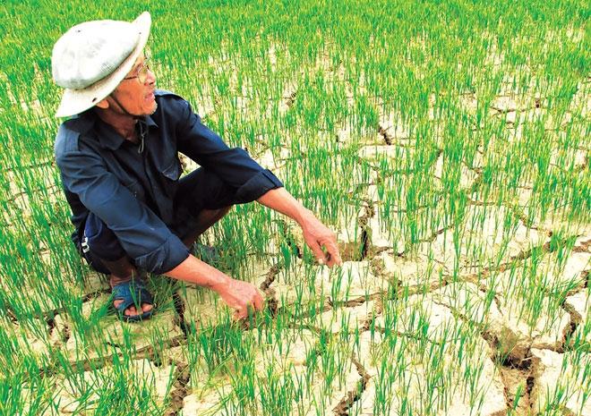 ADB sẽ tài trợ tới 100 tỉ USD cho cuộc chiến chống biến đổi khí hậu