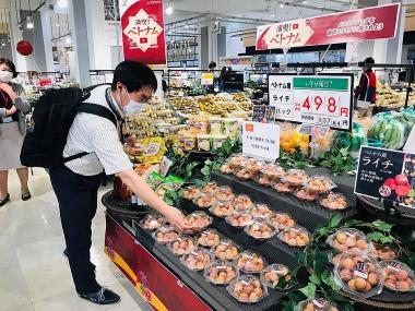 Đa dạng hình thức quảng bá vải thiều Việt Nam tại Nhật Bản