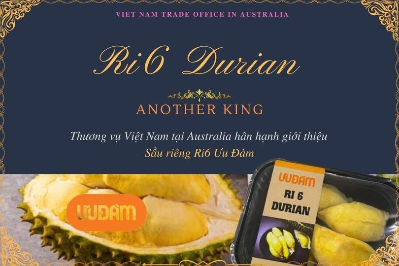 """Sầu riêng Ri6 của Việt Nam """"cháy hàng"""" tại Úc"""