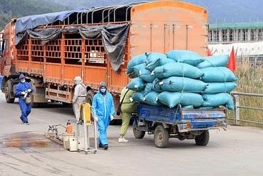 Không để ách tắc trong sản xuất, lưu thông hàng hóa, tiêu thụ nông sản