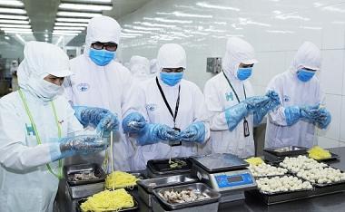 Đưa Việt Nam trở thành quốc gia có trình độ công nghệ sinh học hiện đại trong lĩnh vực chế biến