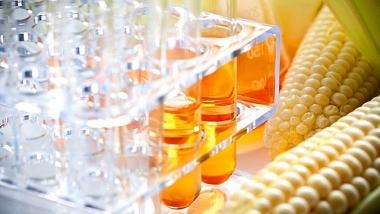 Các sản phẩm đường lỏng HFCS từ Trung Quốc và Hàn Quốc đang bán phá giá tại Việt Nam